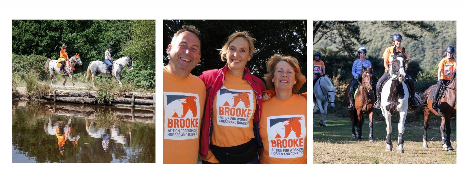 collage with three images of Brooke fundraisers
